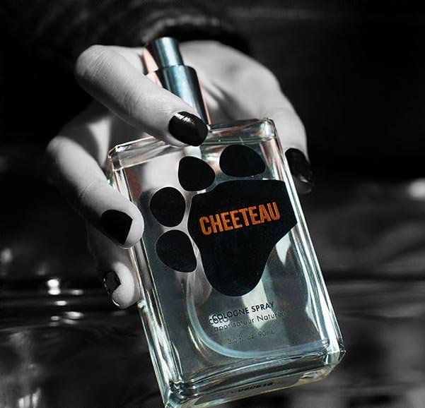 cheetos9