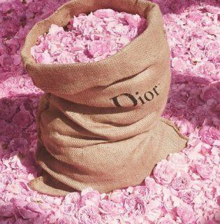 19 év után a Dior új parfümmel jelentkezik