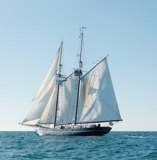 A Lush vitorlás hajóval csökkenti szén-dioxid-kibocsátását